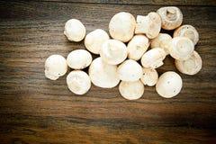 在一个木板的蘑菇 库存照片
