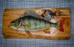 在一个木板的被充塞的美丽,绿色鱼 免版税库存图片