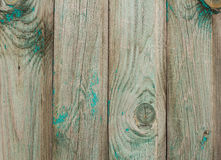 在一个木板的破旧的鲜绿色油漆有结的 难看的东西背景 免版税库存图片