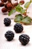 在一个木板的黑莓 免版税库存图片