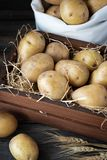 在一个木板箱的有机未加工的土豆在秸杆 库存图片