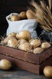 在一个木板箱的有机未加工的土豆在秸杆 图库摄影