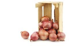 在一个木板箱的桃红色葱 库存照片
