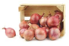 在一个木板箱的桃红色葱 免版税库存图片