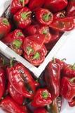 在一个木柳条筐的红色甜椒 免版税库存图片