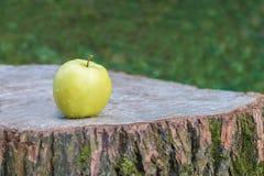 在一个木树桩的一个绿色苹果 免版税图库摄影