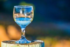 在一个木树桩的半满的酒杯 免版税库存图片