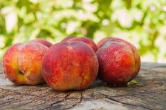 在一个木树桩的桃子谎言 图库摄影