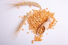 在一个木瓢的豌豆有的麦子两个分支在白色背景的 库存照片