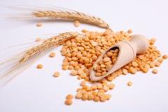 在一个木瓢的豌豆有麦子分支的在白色背景的 免版税库存照片