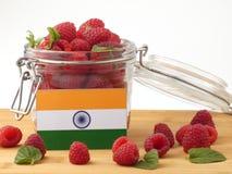 在一个木盘区的印地安旗子用在whi隔绝的莓 库存照片