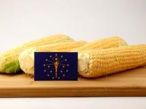 在一个木盘区的印第安纳旗子用在白色bac隔绝的玉米 免版税库存照片