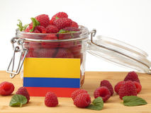 在一个木盘区的哥伦比亚的旗子用在a隔绝的莓 免版税库存照片