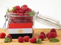 在一个木盘区的埃及旗子用在w隔绝的莓 图库摄影