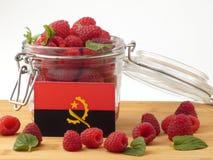 在一个木盘区的安哥拉旗子用在wh隔绝的莓 库存图片