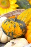 在一个木盘子的季节性南瓜,特写镜头,选择聚焦 库存照片