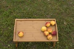 在一个木盘子的明亮的油桃在绿草背景  库存图片