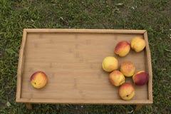 在一个木盘子的明亮的油桃在绿草背景  免版税库存图片
