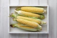 在一个木盘子的甜玉米 库存图片