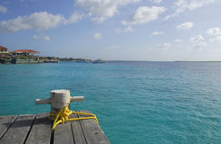 在一个木码头的停泊系船柱在加勒比。 图库摄影