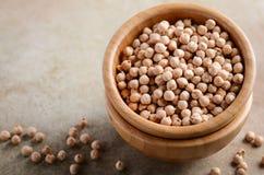 在一个木碗的未加工的有机鸡豆,健康素食主义者素食食品成分 免版税库存照片