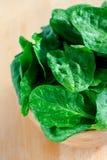 在一个木碗的菠菜叶子 免版税图库摄影