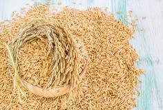 在一个木碗的水稻种子 图库摄影