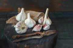 在一个木立场的新鲜的收获大蒜在一个土气样式 艺术 复制地方 免版税库存照片