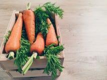 在一个木箱的新红萝卜谎言 库存照片