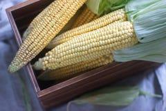 在一个木箱的新鲜的甜未加工的玉米 免版税库存图片