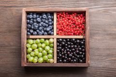 在一个木箱的红色黑醋栗蓝莓鹅莓 免版税库存图片