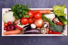 在一个木箱的菜 菜舱内甲板位置 免版税库存照片