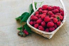 在一个木篮子的红草莓 库存照片