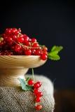 在一个木花瓶的成熟红浆果 库存图片