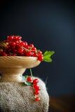 在一个木花瓶的成熟红浆果 免版税库存图片