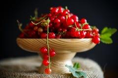 在一个木花瓶的成熟红浆果 免版税图库摄影