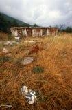 在一个村庄的废墟在科索沃。 库存图片