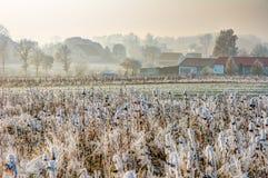 在一个村庄的结霜的领域在巴伐利亚 图库摄影