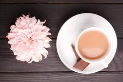 在一个杯子的一朵菊花可可粉附近 在一张木表 户内 库存照片