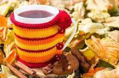在一个杯子的果子茶在被编织的盖子 图库摄影