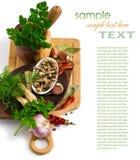 在一个杯子的用卤汁泡的蘑菇在香料背景 免版税图库摄影