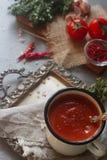 在一个杯子的自创有机蕃茄汤用新鲜的草本、大蒜、红辣椒和喜马拉雅盐在葡萄酒盘子 免版税库存图片