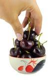 在一个杯子的黑樱桃在白色背景 库存图片