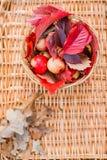 在一个柳条盘子的水多的苹果,围拢由下落的秋叶 与干燥说谎的美好的分支  库存图片