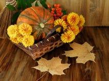在一个柳条筐与花,花揪的南瓜和烘干叶子 库存图片