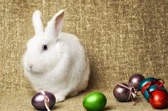 在一个柳条筐旁边的白色干净的美丽的复活节兔子用在背景krashenyymi自然粗麻布布料的鸡蛋 库存图片
