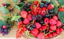 在一个柳条筐的夏天莓果 库存照片