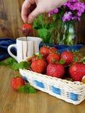 在一个柳条筐的草莓和巧克力汁在背景中 图库摄影