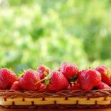 在一个柳条筐的草莓 夏天庭院的被弄脏的背景 库存照片