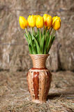 在一个柳条花瓶的黄色郁金香在干草背景。 图库摄影